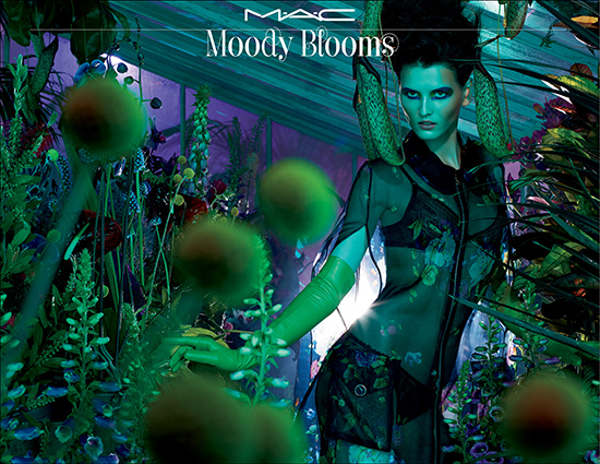 moody bloom